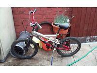 Magna Boomtown kid's bike