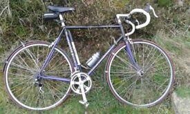 """Graham Weigh 24"""" gents racing bike"""