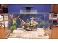 25 LITER TROPICAL AQUARIUM/FISH TANK