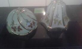 2 glass light shades floral design