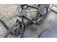 Amazing apollo mountain bike for sale