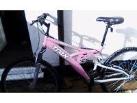 Lady's pink trax mountain bike