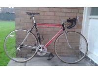 deBernardi Racer/Road bike Columbus Steel Frame