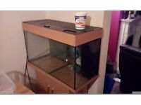 Fish tank, filter and accessories