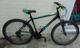Ex demo rad mountain bike