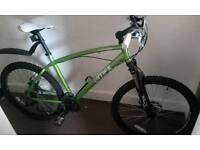 Men's Muddyfox Voltage mountain bike