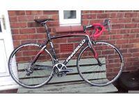 NEW Pinarello road bike, 54cm frame set new saddle, post etc. CARBON FORKS, & FRAME