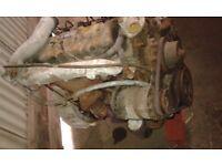 Perkins 4236 Diesel Engine