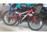 For sale boys full suspension 21speed apollo mountain bike