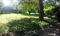 3 BEDROOM HOUSE/APARTMENT WITH BIG BACKYARD FOR RENT