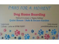 Dog Home Boarding
