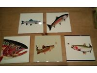 "Beautiful ceramic tiles with pheasant, salmon, trout and country designs. 6"" x 6"""