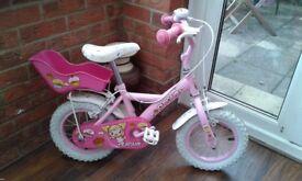 Girls first big bike