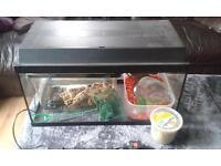 Excellent start up tanks (big fish tank+ small tarantula tank )
