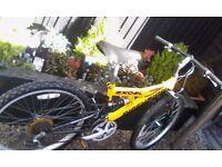 Boy's full suspension bike
