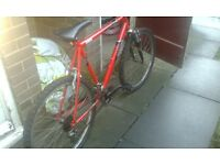 mountain bike in good condition want 30 ono for it