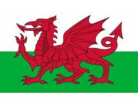 Welsh Teacher (part time )