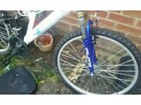Bike back injury can not ride again