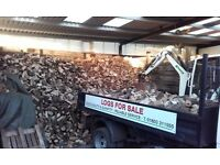 Seasoned firewood logs ready for burning
