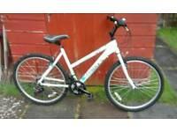 Daws womens mountain bike