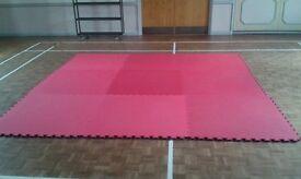 Judo / Gym/ / Sports mats