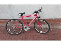 """Ideal Christmas Present - Red 24-26"""" Frame Mountain Bike - Very Good Condition"""