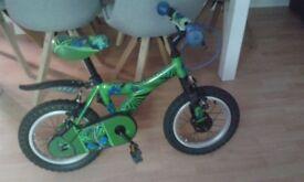 Boys bike (14)