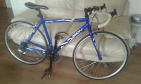 Apollo fusion racer road bike 19 inch frame 28 inch 700 wheels