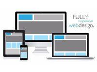 £300 websites