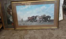 Shire Horse print