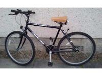 Mountain Bike (Black)