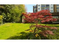 Bright modern 2 bed flat great views
