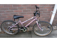 "Girls Raleigh Elysia 20"" Wheel Mountain Bike Bicycle"