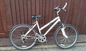 Apollo instinct mountain bike