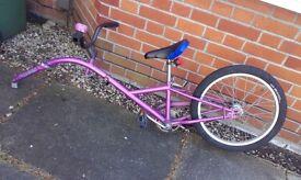 Children's Trail-A-Bike