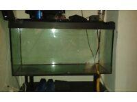 FISH TANK 3.5 FT EXTRA TOUGH GLASS