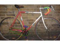 Vintage Singlespeed. Apollo multicolor frame