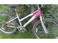 Girl's Triumph bike for approx age 8 -10