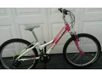 Trex girls bike