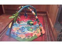 Baby Einstein playmat for £15 only