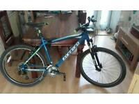 Carrera Valour 20'' frame Mountain bike