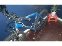 Mens mongoose bike.