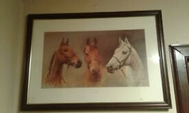 Arkle red rum desert orchid we three kings picture