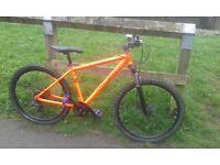 Custom trek mountain bike