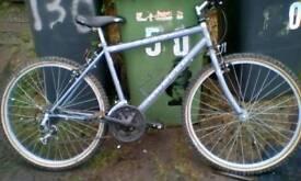 Appolo bike