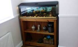 4ft tropical fish tank and stand