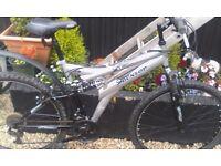Man's dunlop mountain bike