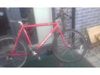 "26"" cannondale bike"