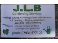 Gardener looking for any type of work.