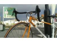 go sport east european road bike campagnolo